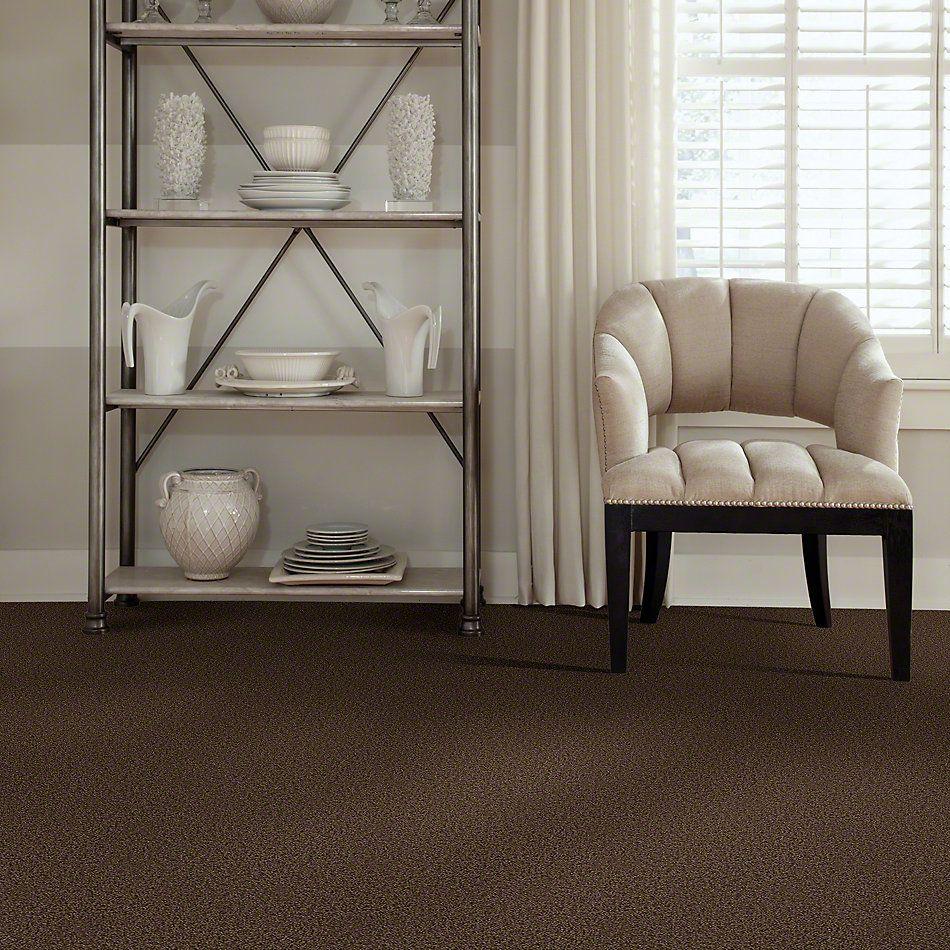 Shaw Floors Enduring Comfort III Coffee Bean 00705_E0343