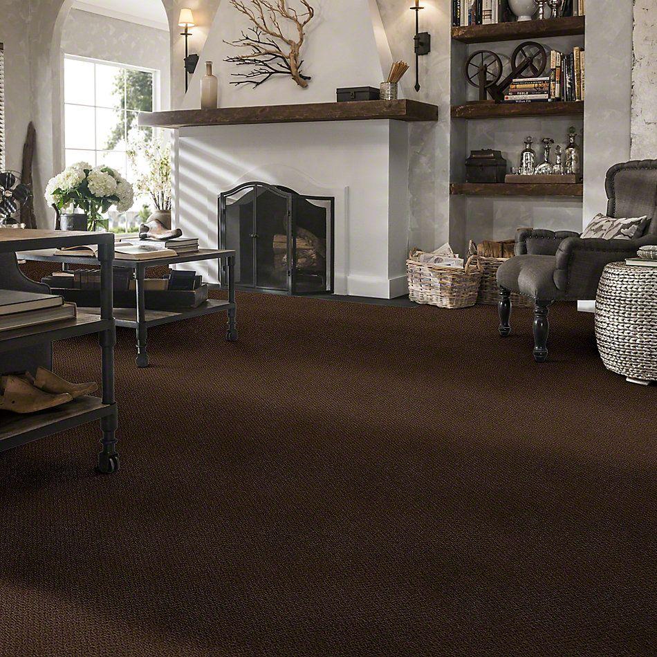 Shaw Floors Timeless Charm Loop Coffee Bean 00705_E0405