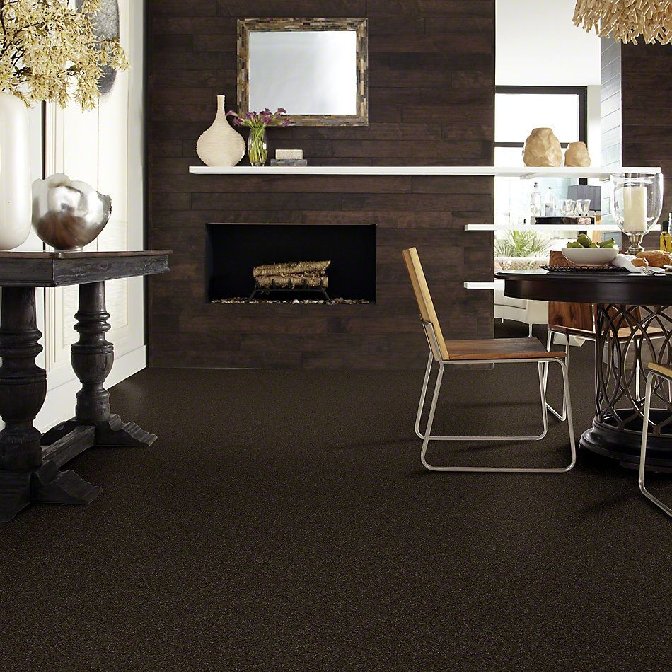 Shaw Floors Foundations Invitation Only II Chocolate Chip 00705_E0631