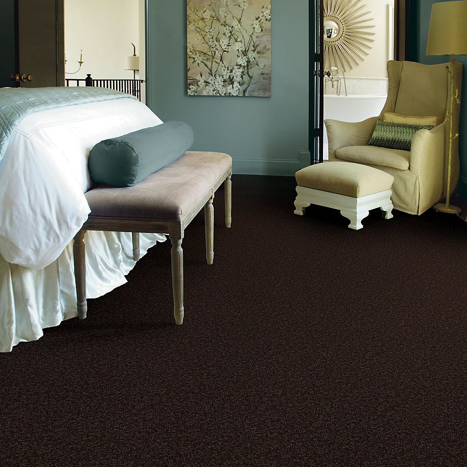 Shaw Floors Value Collections All Star Weekend I 12 Net Coffee Bean 00705_E0792