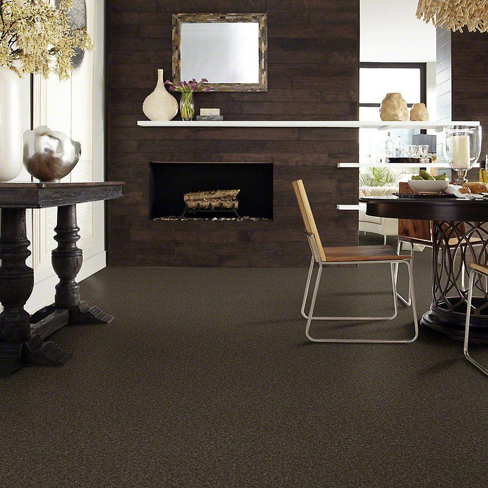 Shaw Floors Value Collections Keep Me I Net Walnut 00705_E0817