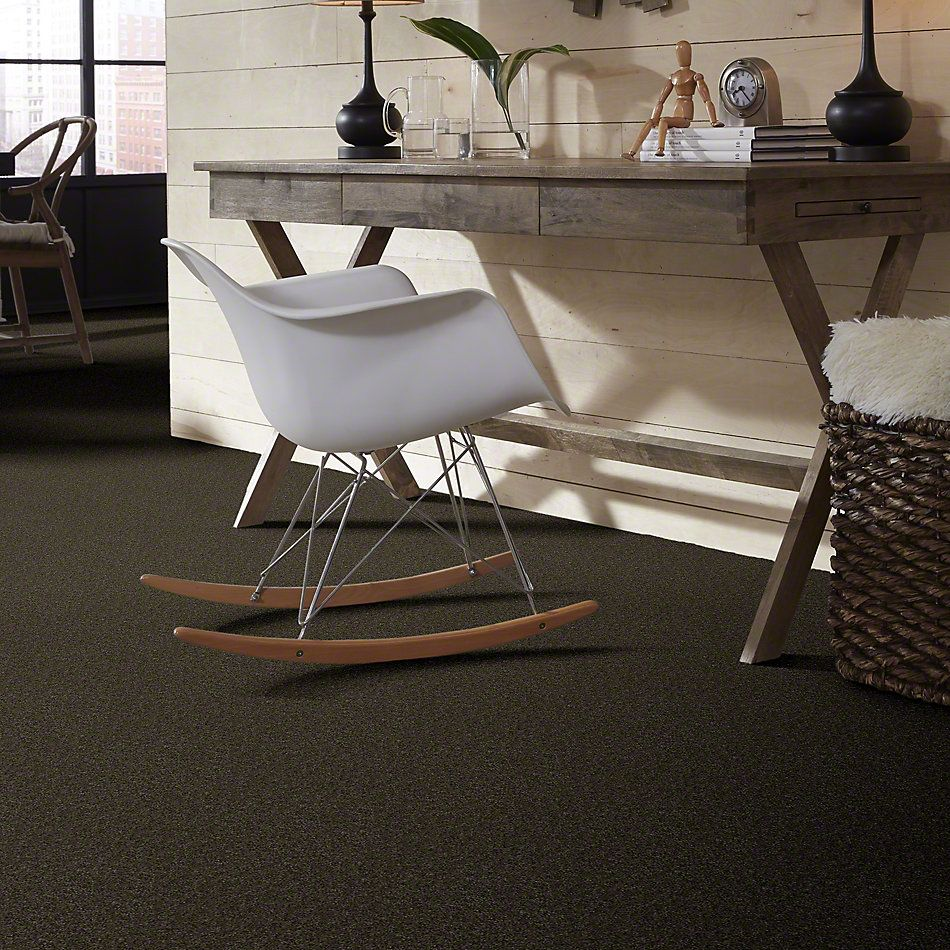 Shaw Floors Value Collections Sing With Me II Net Walnut 00705_E0906