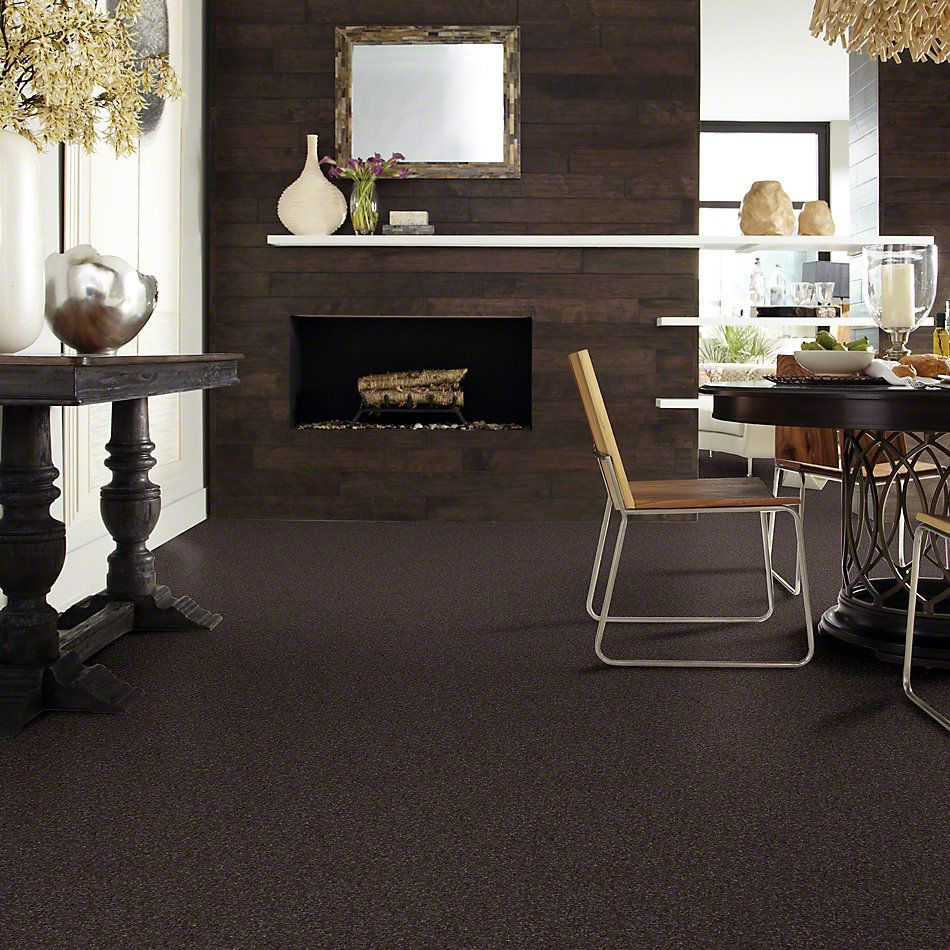 Shaw Floors Value Collections That's Right Net Cabot Trail 00705_E0925