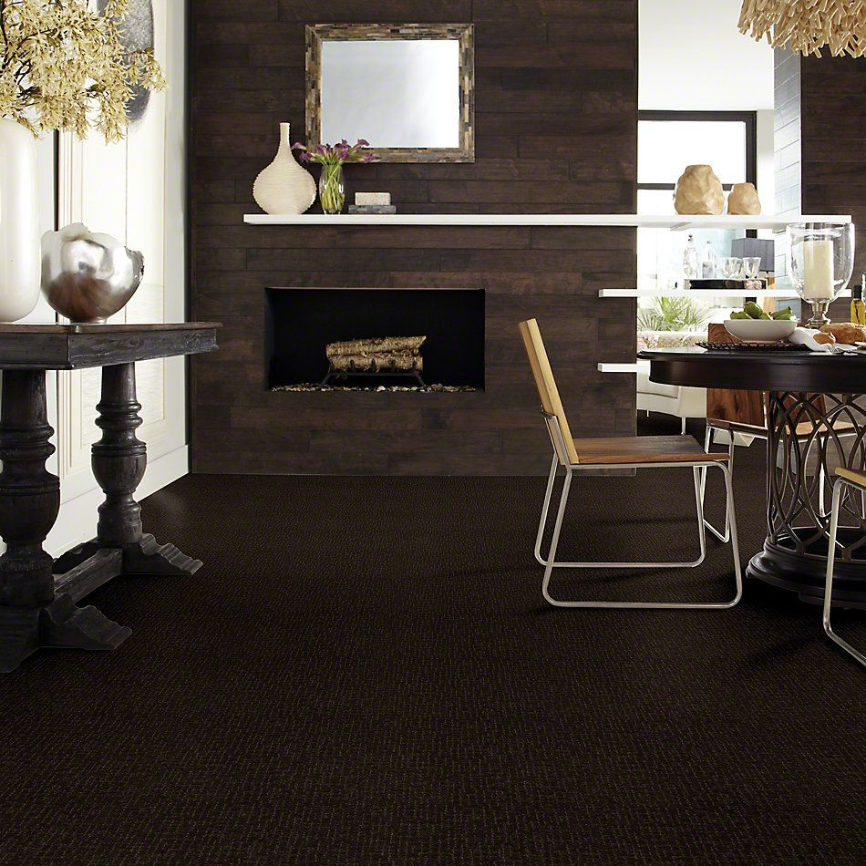 Shaw Floors Value Collections Fall For Me Net Chocolate Chip 00705_E9115