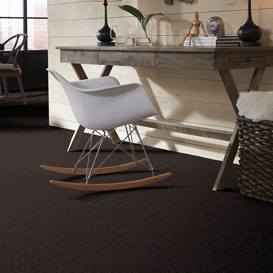 Shaw Floors Value Collections Look Forward Net Cabot Trail 00705_E9125