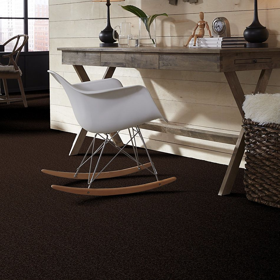 Shaw Floors Value Collections Full Court 15′ Net Coffee Bean 00705_E9270