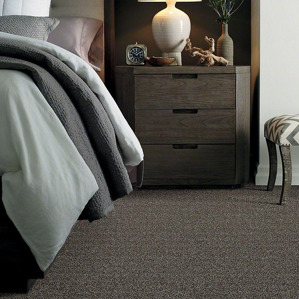 Shaw Floors Bellera Points Of Color II Bark 00705_E9643