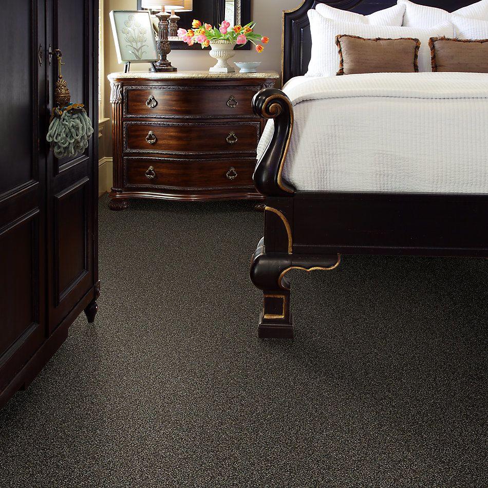 Shaw Floors Bellera Points Of Color II Net Bark 00705_E9786