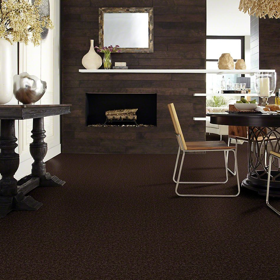Shaw Floors SFA Drexel Hill II 15′ Coffee Bean 00705_EA052