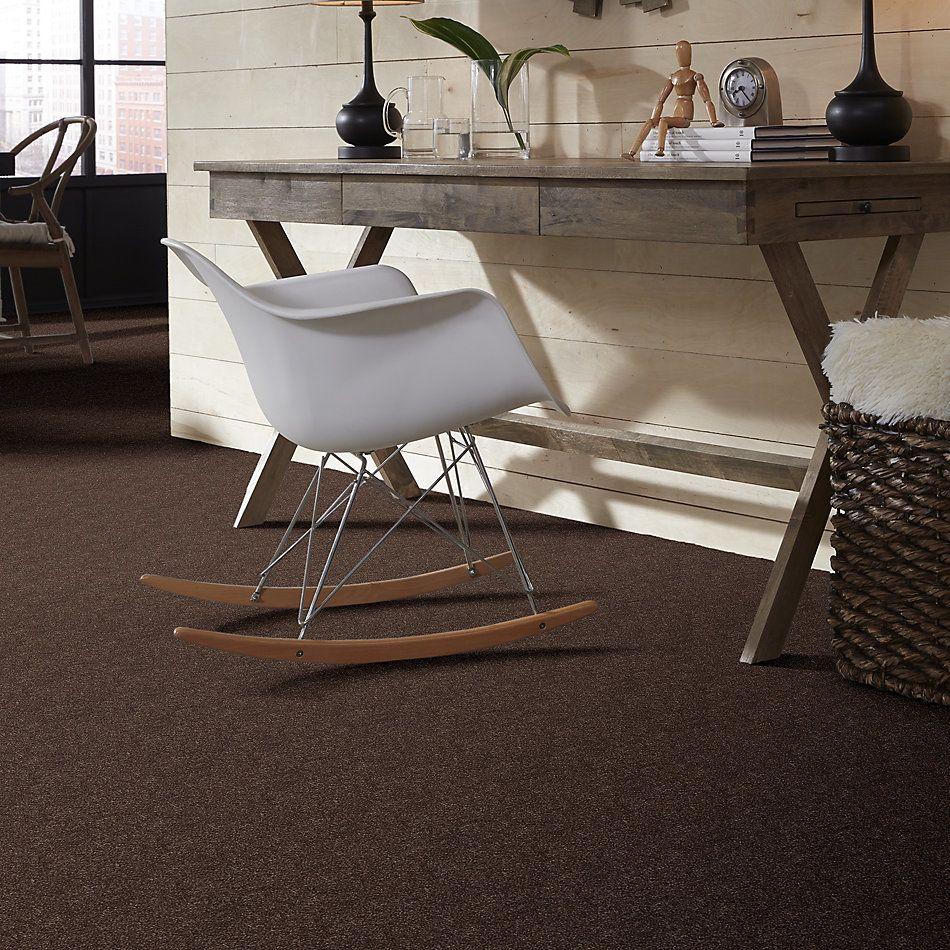 Shaw Floors Shaw Floor Studio Home News II 15′ Cup Of Java 00705_FS131