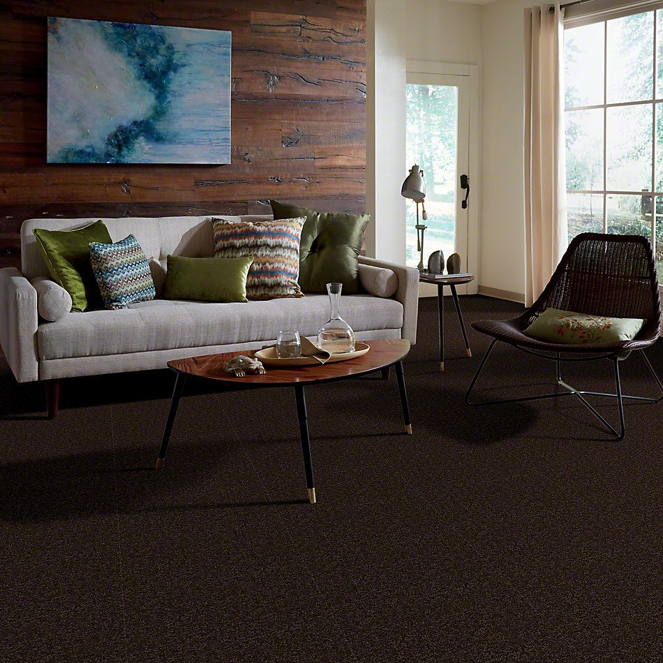 Shaw Floors Home Foundations Gold Fast Ball 15′ Coffee Bean 00705_HGL46
