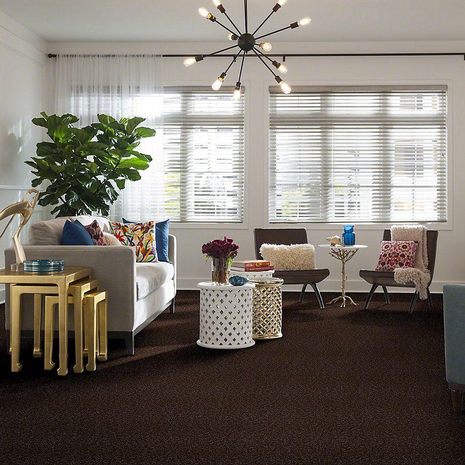 Shaw Floors Shaw Flooring Gallery Invite Possibility I 12 Mocha Chip 00705_Q314G