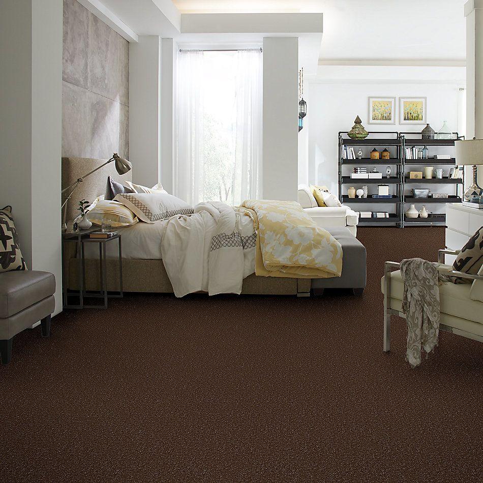 Shaw Floors Queen Harborfields I 12′ Mocha Chip 00705_Q4718