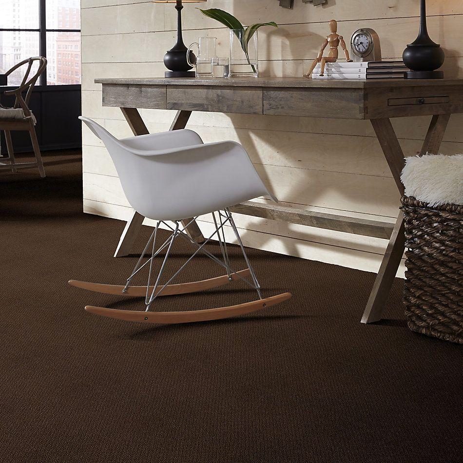 Shaw Floors Shaw On Shelf Playa Azul Coffee Bean 00705_SOS83