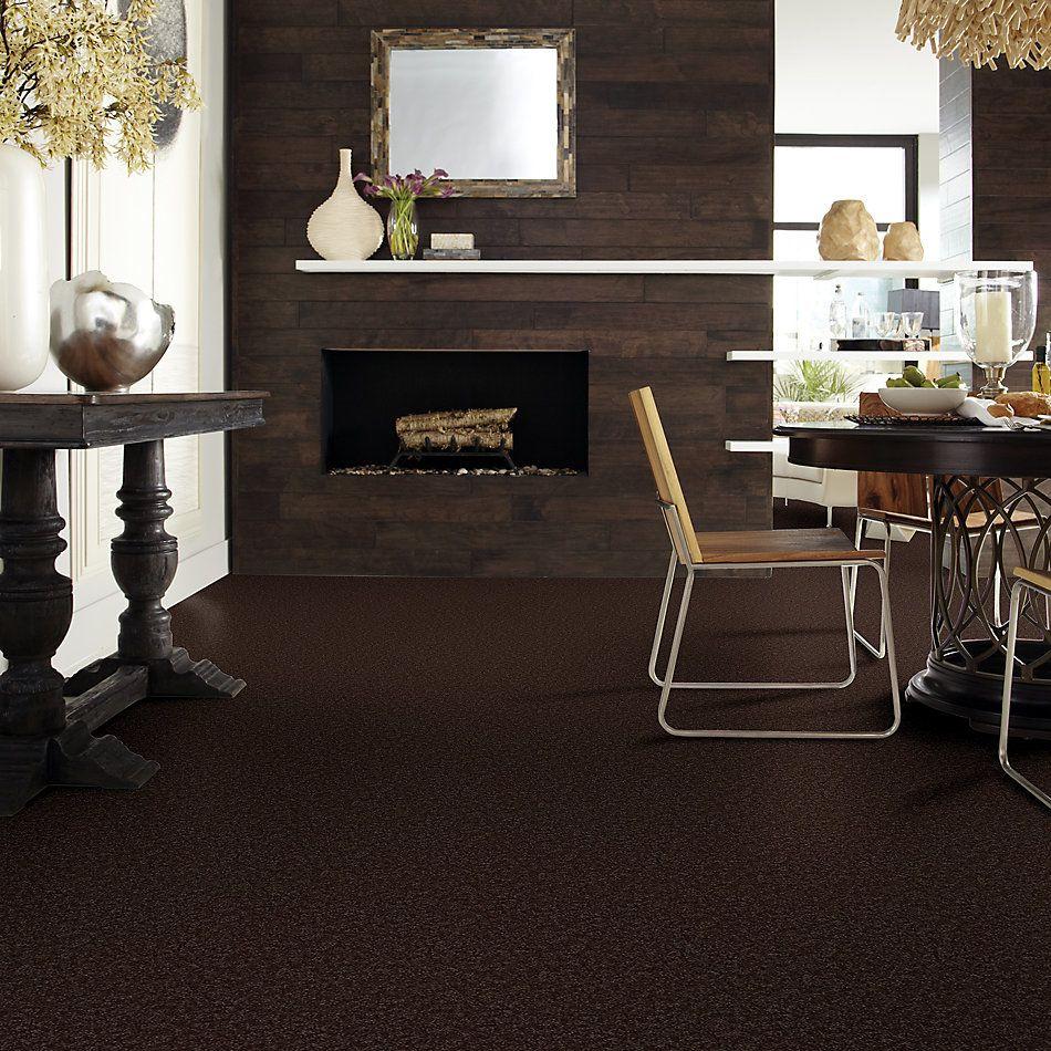 Shaw Floors Roll Special Xv863 Coffee Bean 00705_XV863