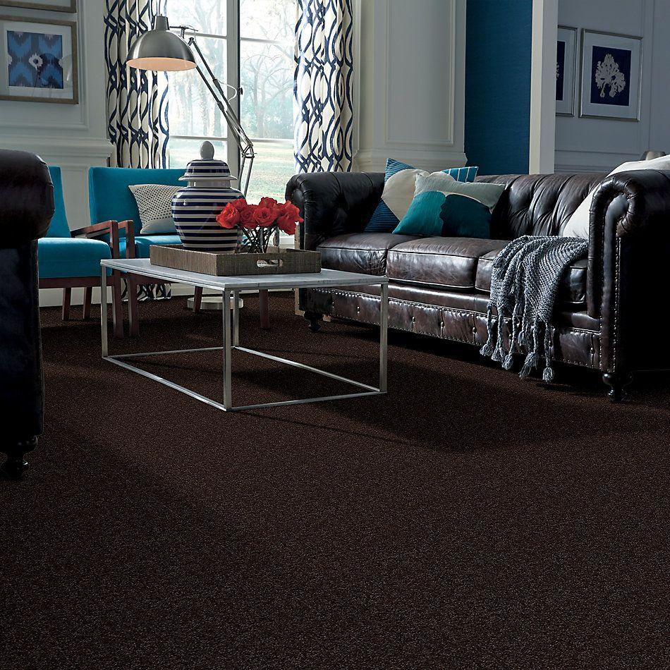 Shaw Floors Roll Special Xv866 Coffee Bean 00705_XV866