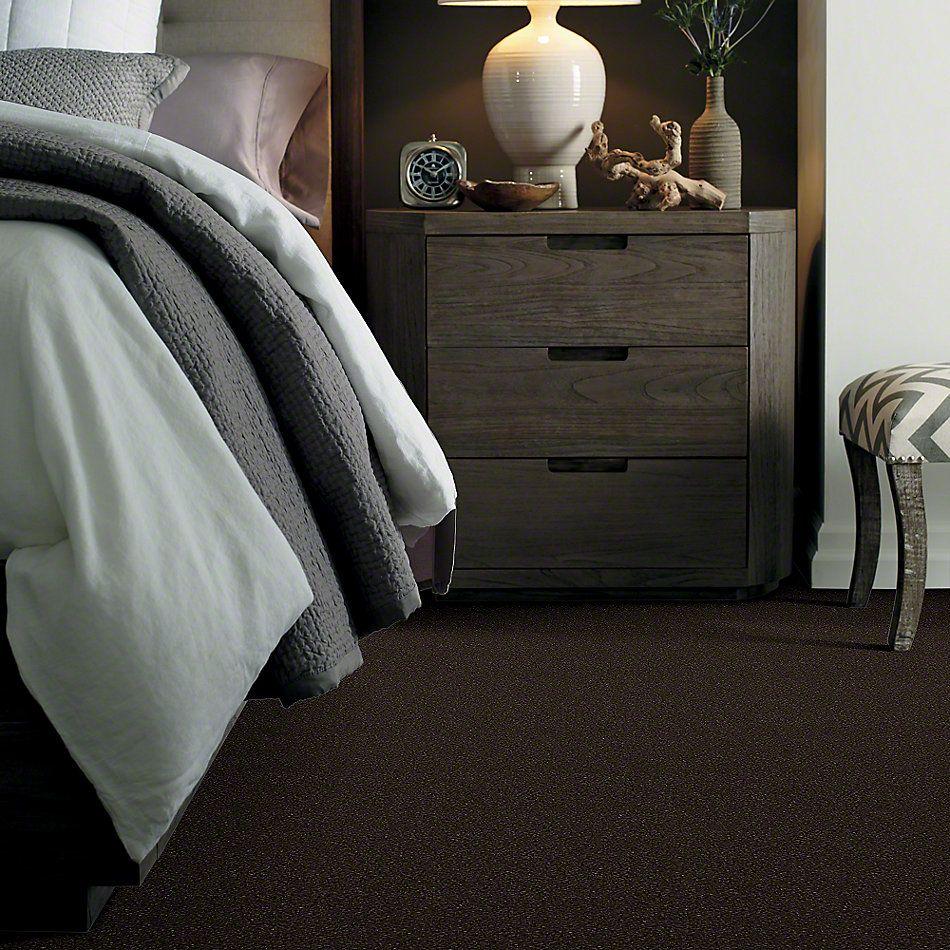 Shaw Floors SFA Vivid Colors III Dark Chocolate 00706_0C162