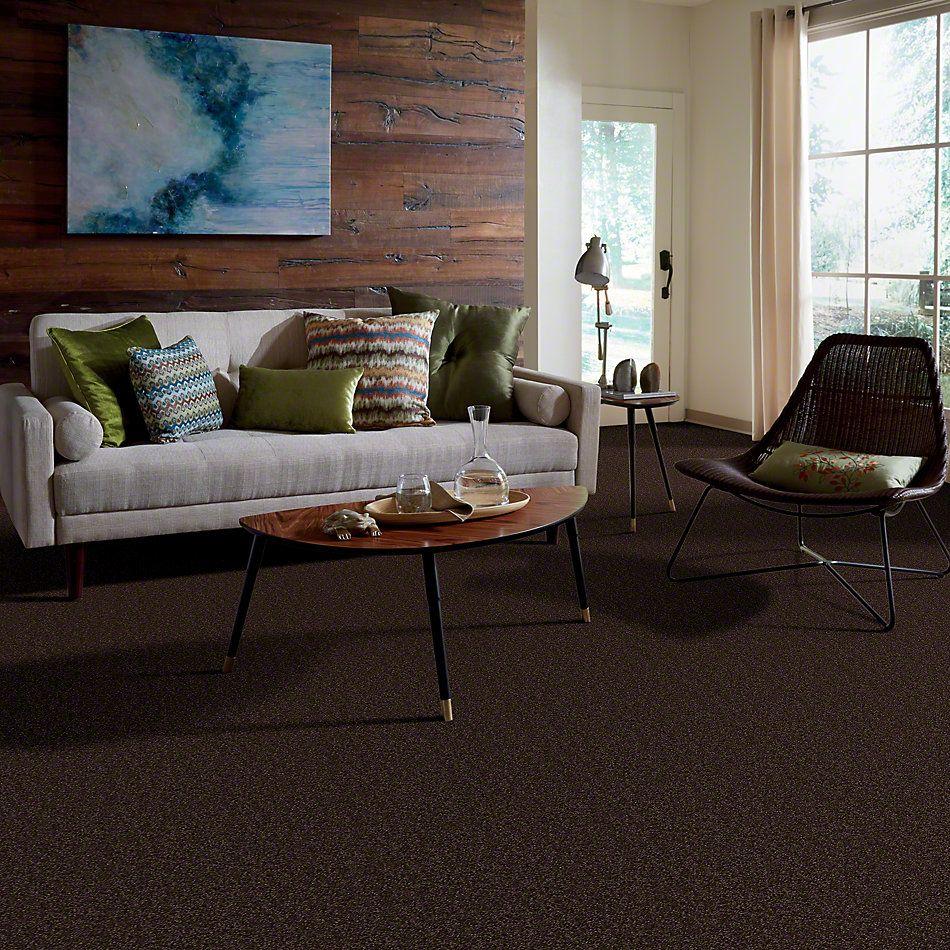 Shaw Floors Town Creek II Walnut 00706_52S30