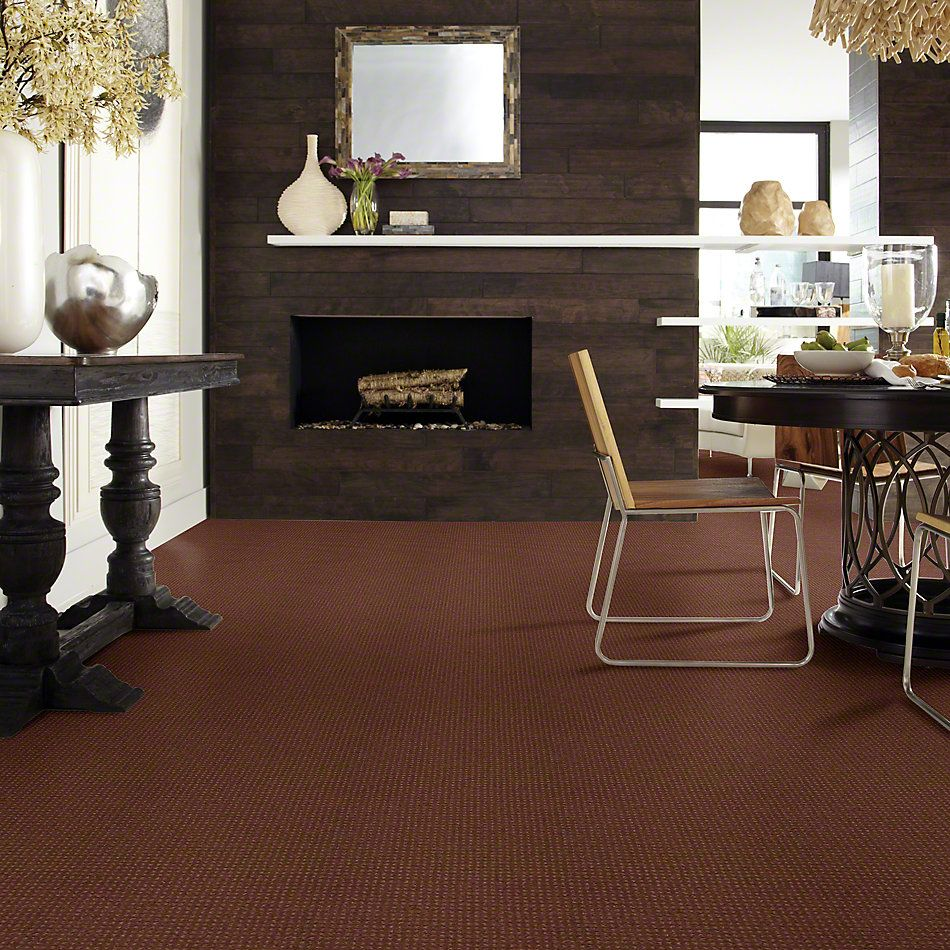 Shaw Floors Shaw Design Center Warm Welcome Mocha Chip 00706_5C587