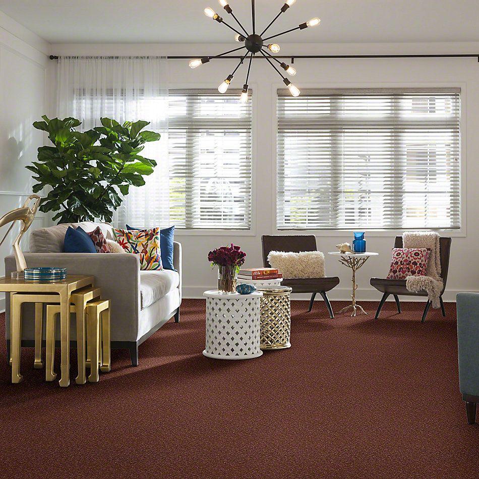 Shaw Floors Magic At Last I 12′ Mocha 00706_E0200