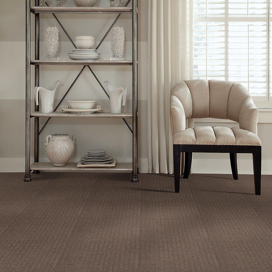 Shaw Floors Caress By Shaw My Expression Lg Pebble Creek 00706_CC28B