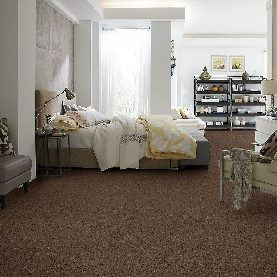 Shaw Floors Caress By Shaw Quiet Comfort I Pebble Creek 00706_CCB30