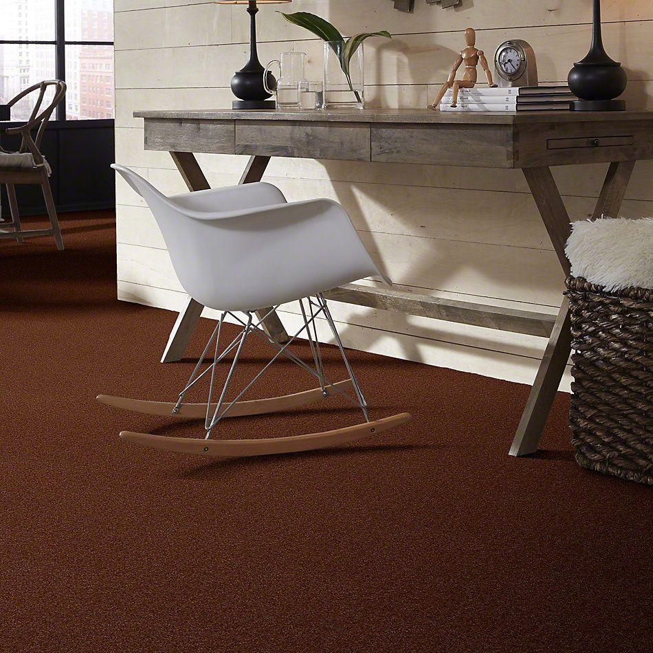 Shaw Floors Lonestar Bronzetone 00706_E0113
