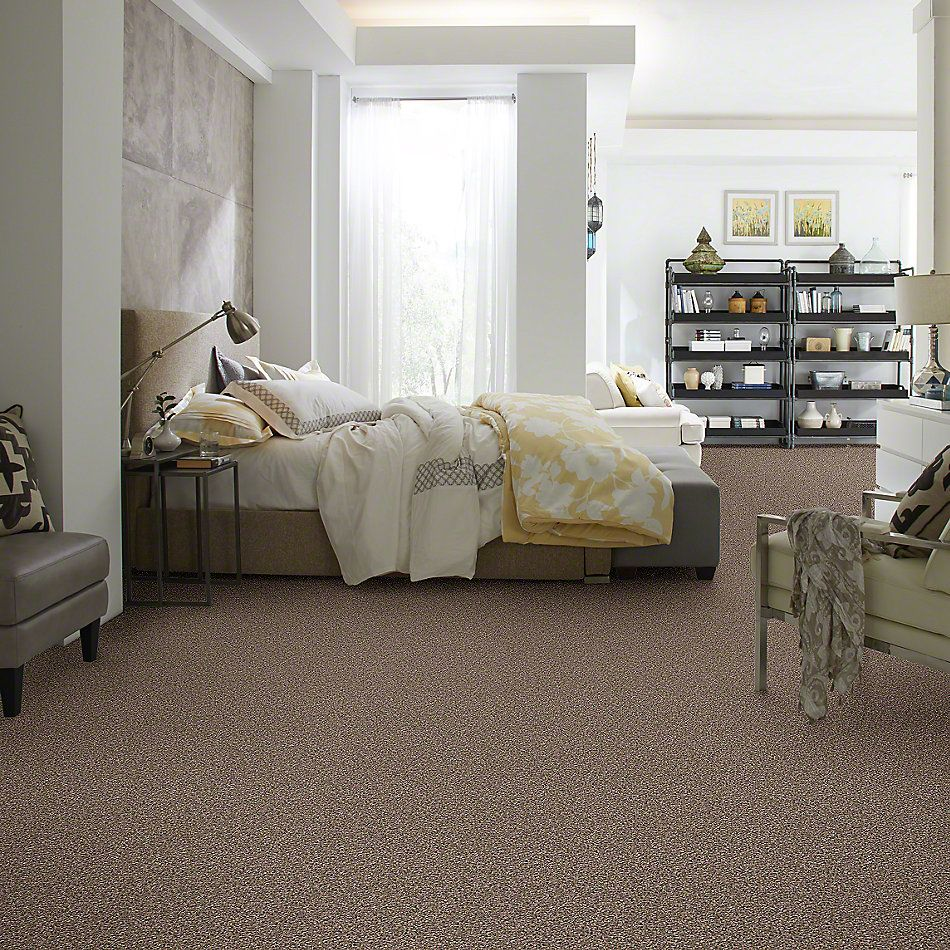 Shaw Floors Value Collections Power Buy 75 Safari Linen 00706_E0375