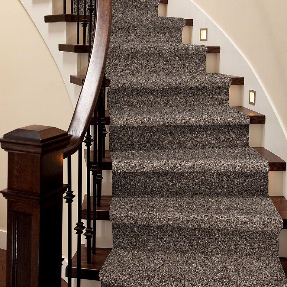 Shaw Floors Value Collections Power Buy 275 Safari Linen 00706_E0395