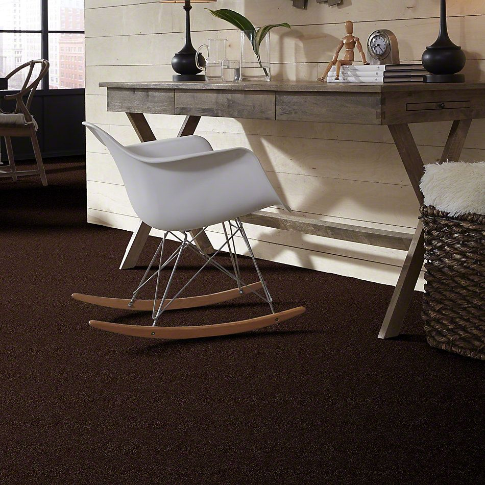 Shaw Floors Clearly Chic Bright Idea II Dark Chocolate 00706_E0505