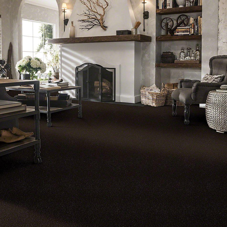 Shaw Floors Clearly Chic Bright Idea III Dark Chocolate 00706_E0506