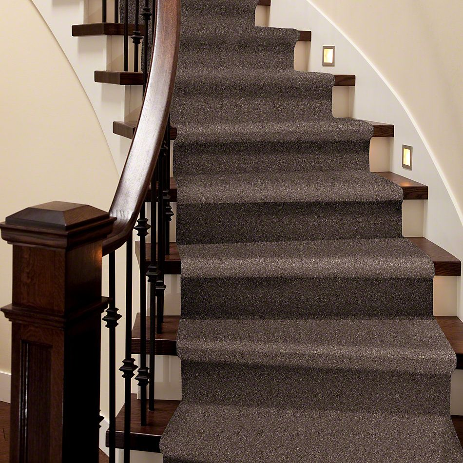 Shaw Floors Value Collections That's Right Net Rustic Taupe 00706_E0925