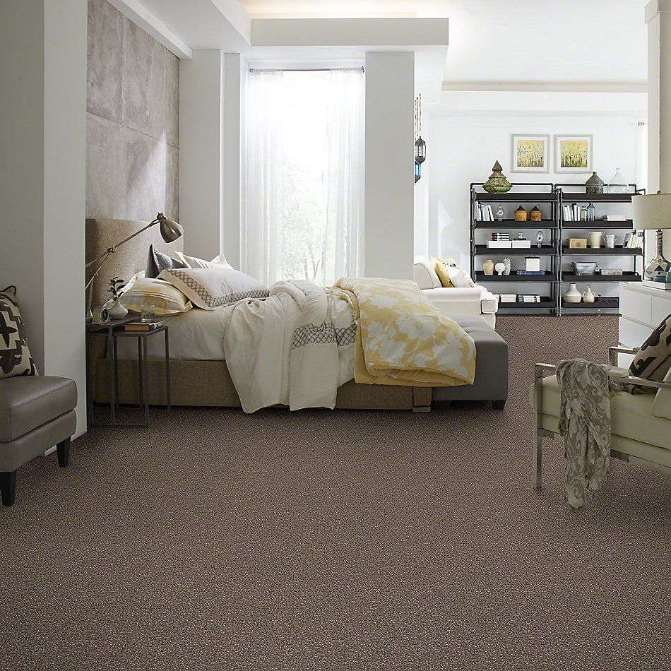 Shaw Floors Value Collections Majority Rules Net Rustic Taupe 00706_E9126
