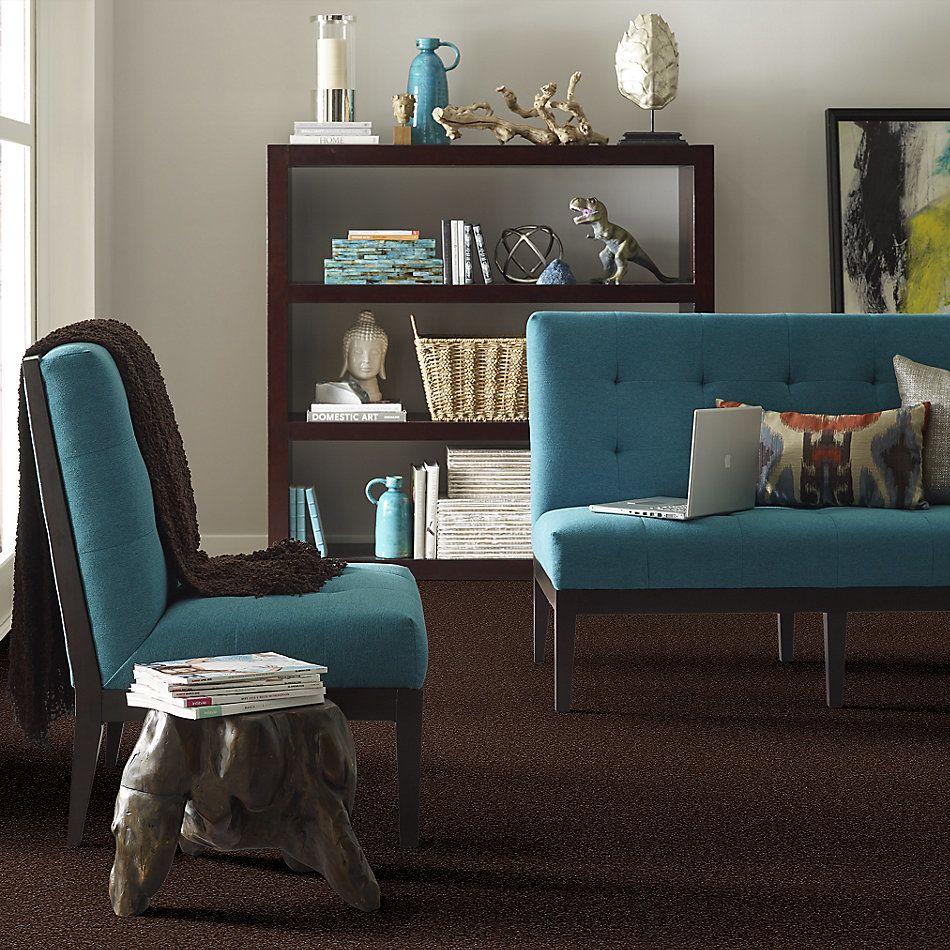 Shaw Floors Value Collections Passageway II 15 Net Walnut 00706_E9621