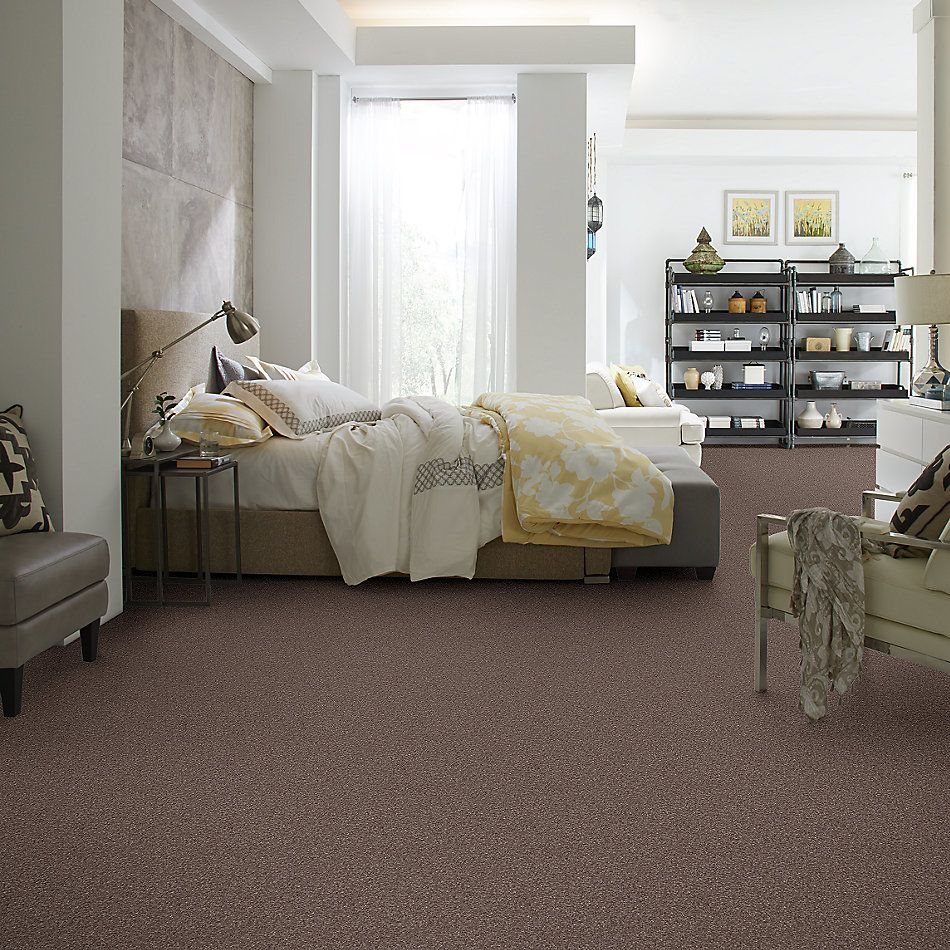 Shaw Floors Roll Special Xv813 Rustic Taupe 00706_XV813