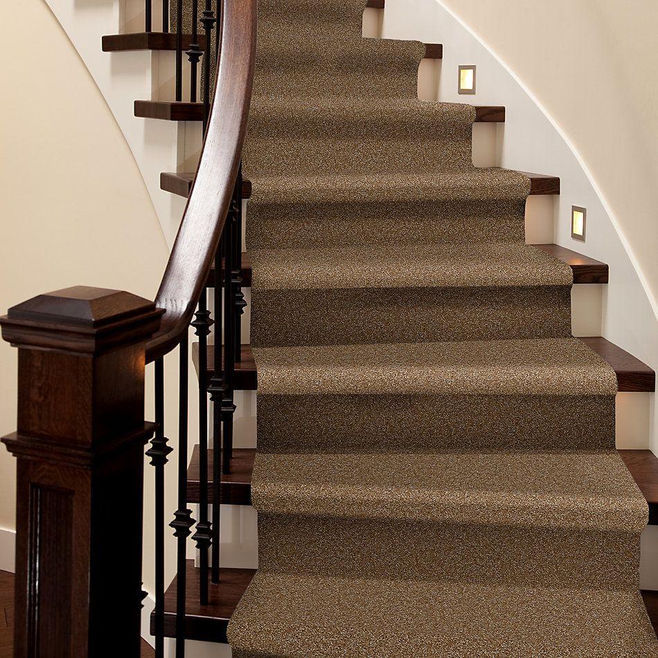 Shaw Floors SFA Spartan Braided Rug 00707_52548