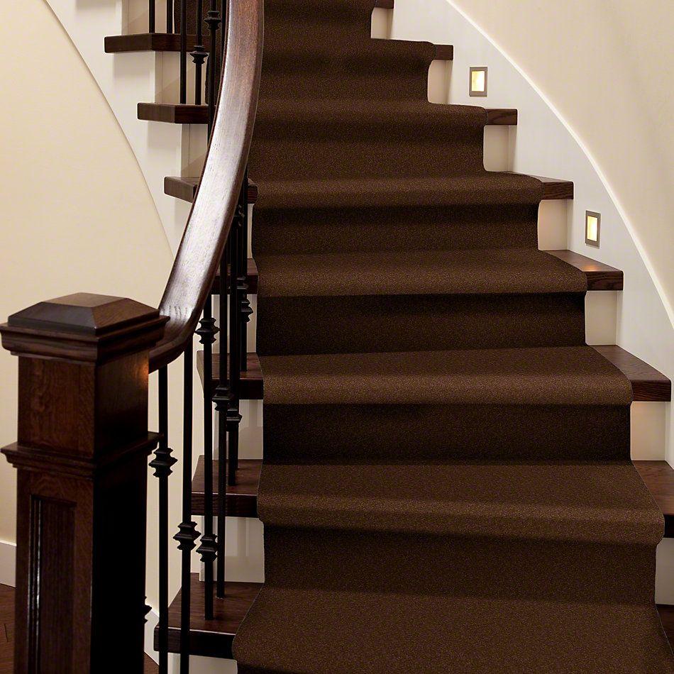 Shaw Floors Everyday Comfort (s) Fudge 00707_52P07