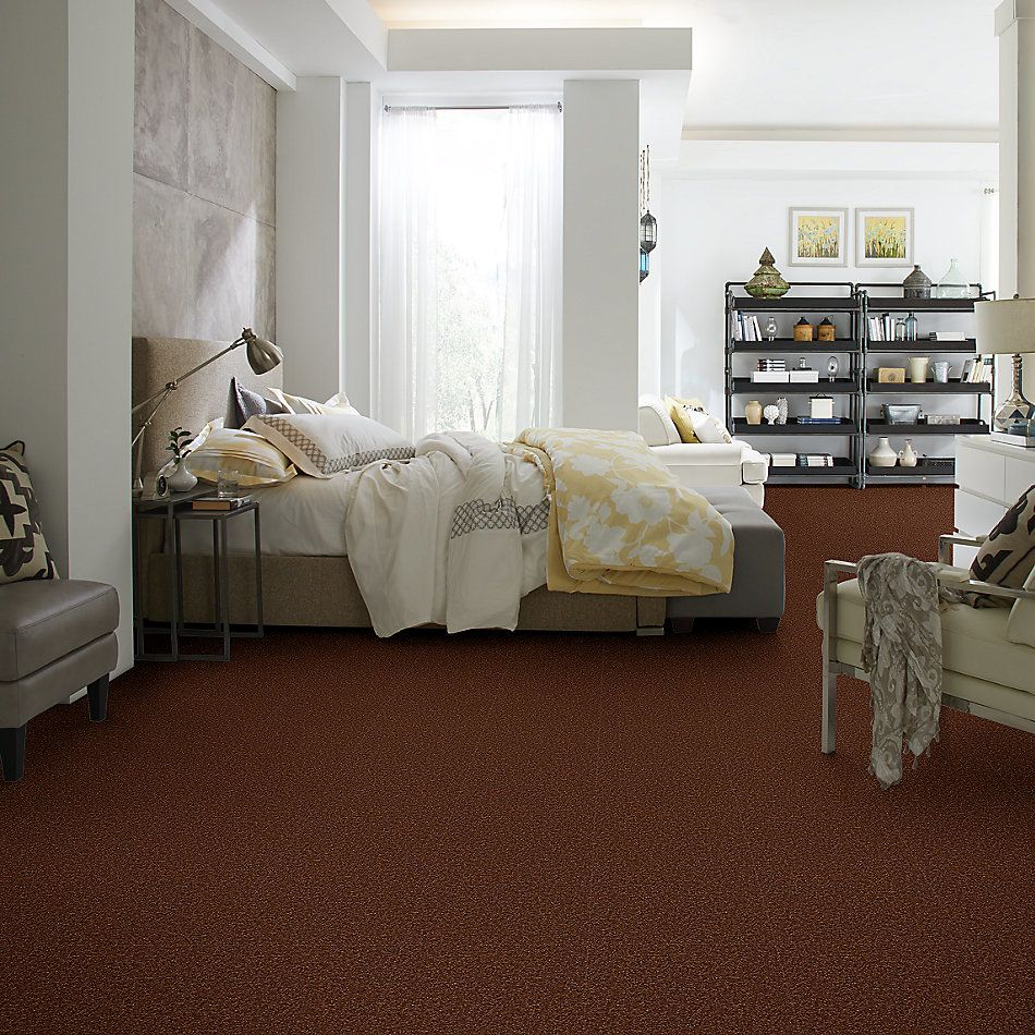Shaw Floors Value Collections Sandy Hollow Cl Iv Net Tortoise Shell 00707_5E512