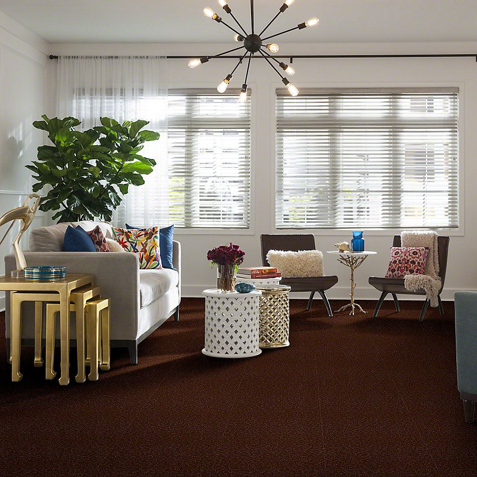 Shaw Floors Magic At Last Iv 12 Cocoa 00707_E0205