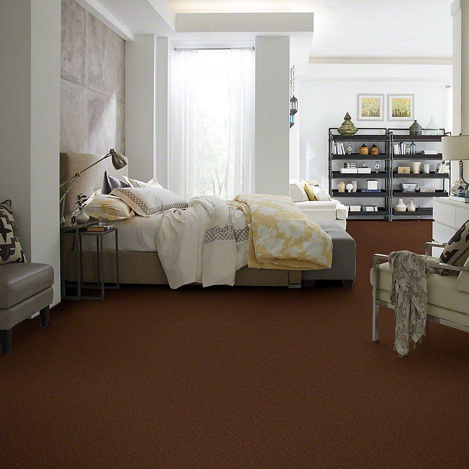 Shaw Floors Sandy Hollow I 12′ Tortoise Shell 00707_Q4273