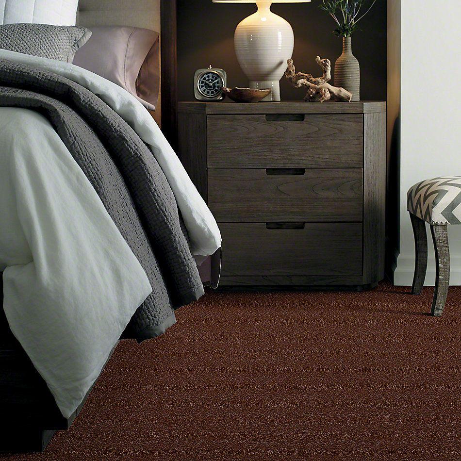 Shaw Floors Sandy Hollow III 12′ Tortoise Shell 00707_Q4277