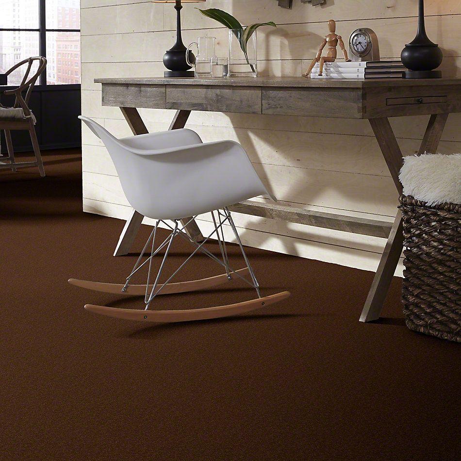 Shaw Floors SFA Timeless Appeal I 12′ Tortoise Shell 00707_Q4310