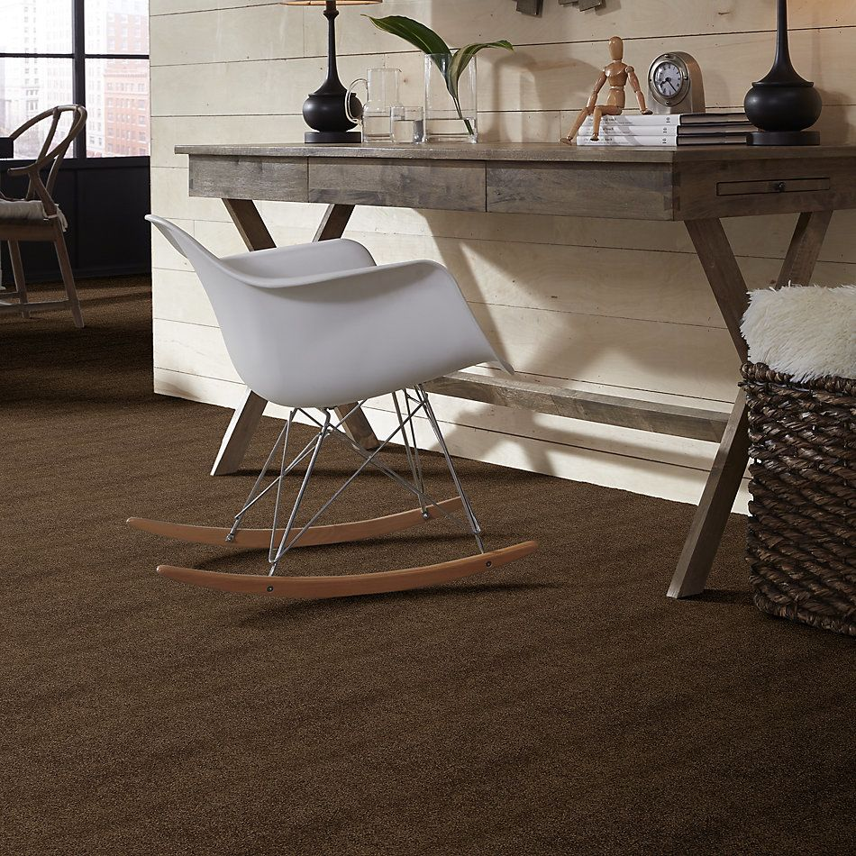 Shaw Floors Caress By Shaw Cashmere I Lg Bison 00707_CC09B