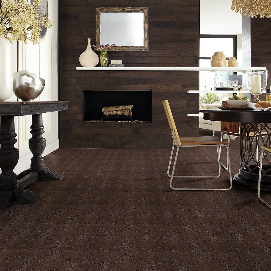 Shaw Floors Caress By Shaw Appreciation Lg Bison 00707_CC22B