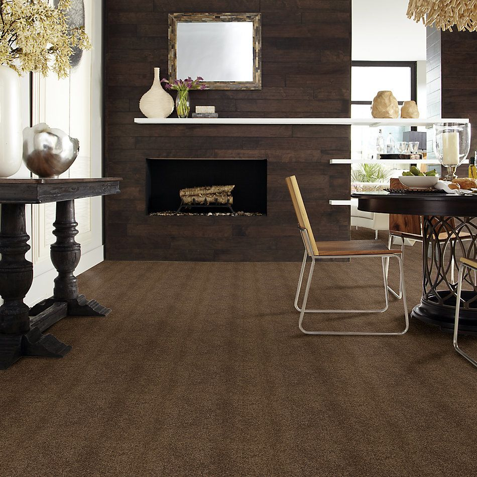 Shaw Floors Value Collections Cashmere Iv Lg Net Bison 00707_CC50B