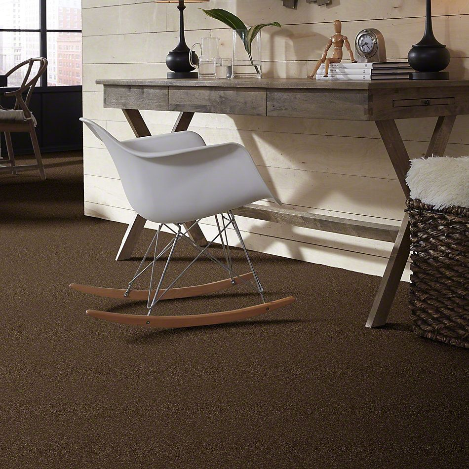 Shaw Floors Caress By Shaw Quiet Comfort I Bison 00707_CCB30