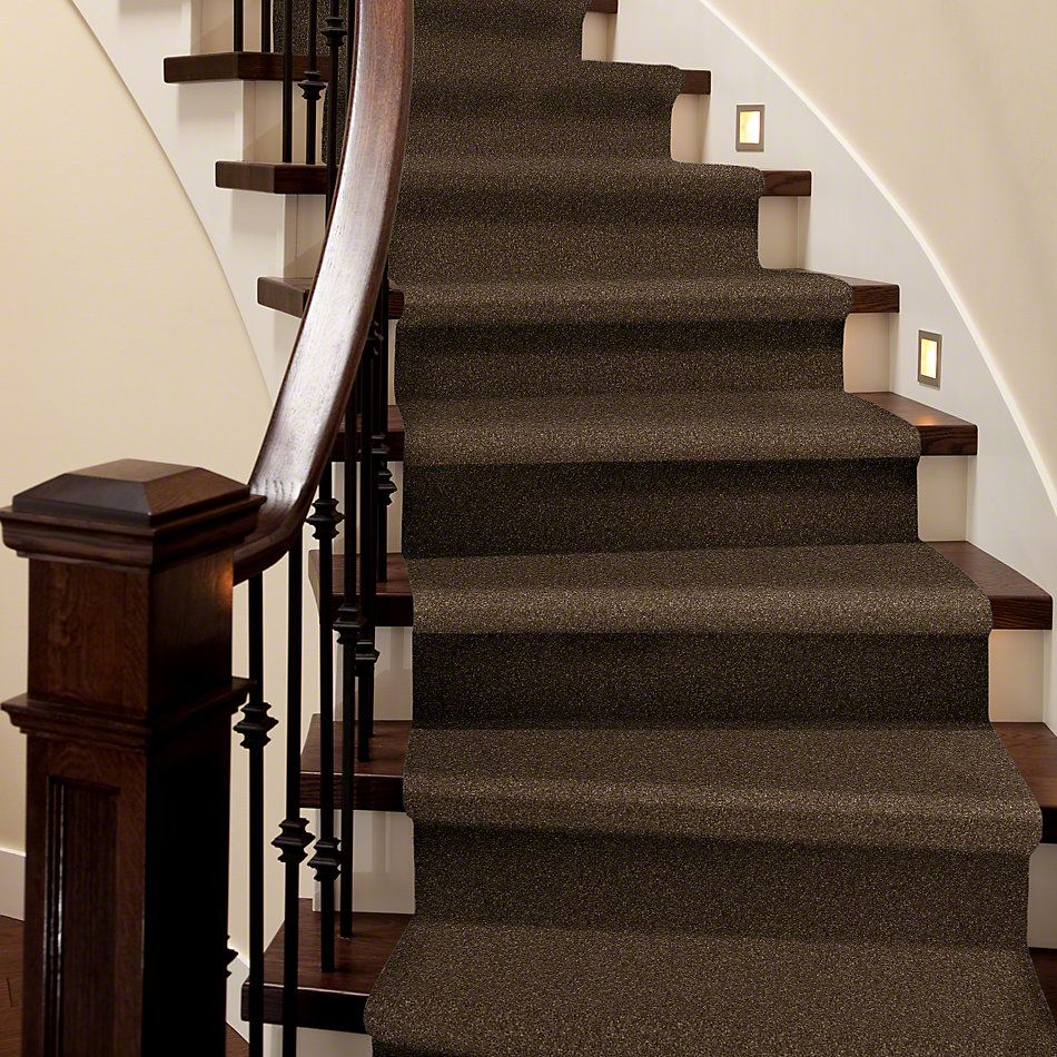 Shaw Floors Caress By Shaw Quiet Comfort III Bison 00707_CCB32