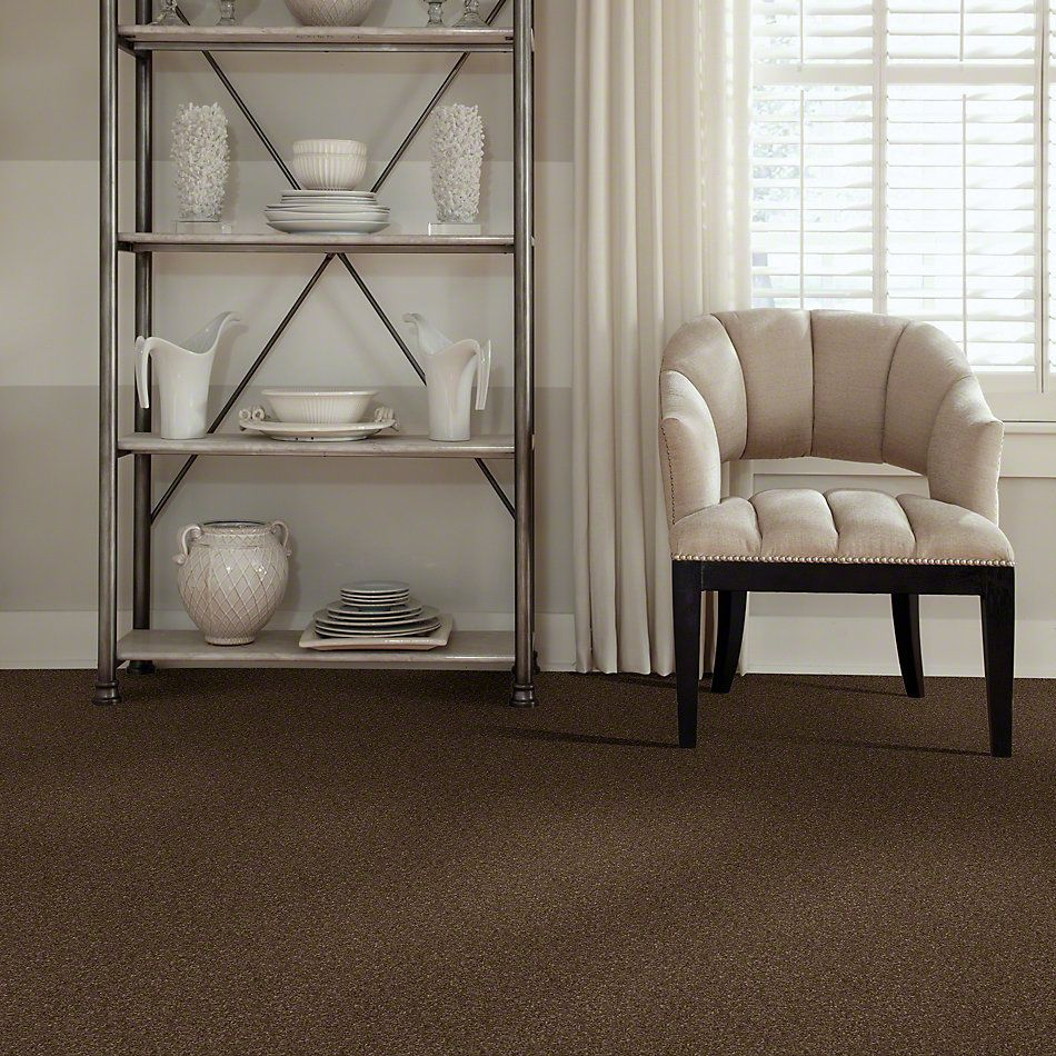 Shaw Floors Caress By Shaw Quiet Comfort Classic I Bison 00707_CCB96