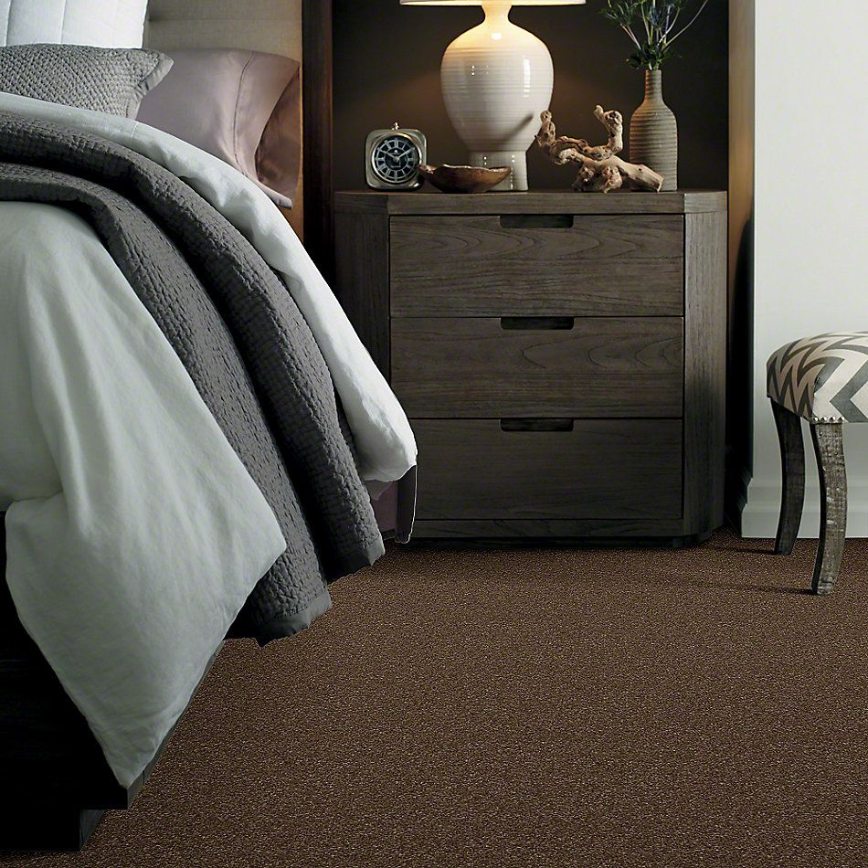 Shaw Floors Caress By Shaw Quiet Comfort Classic III Bison 00707_CCB98