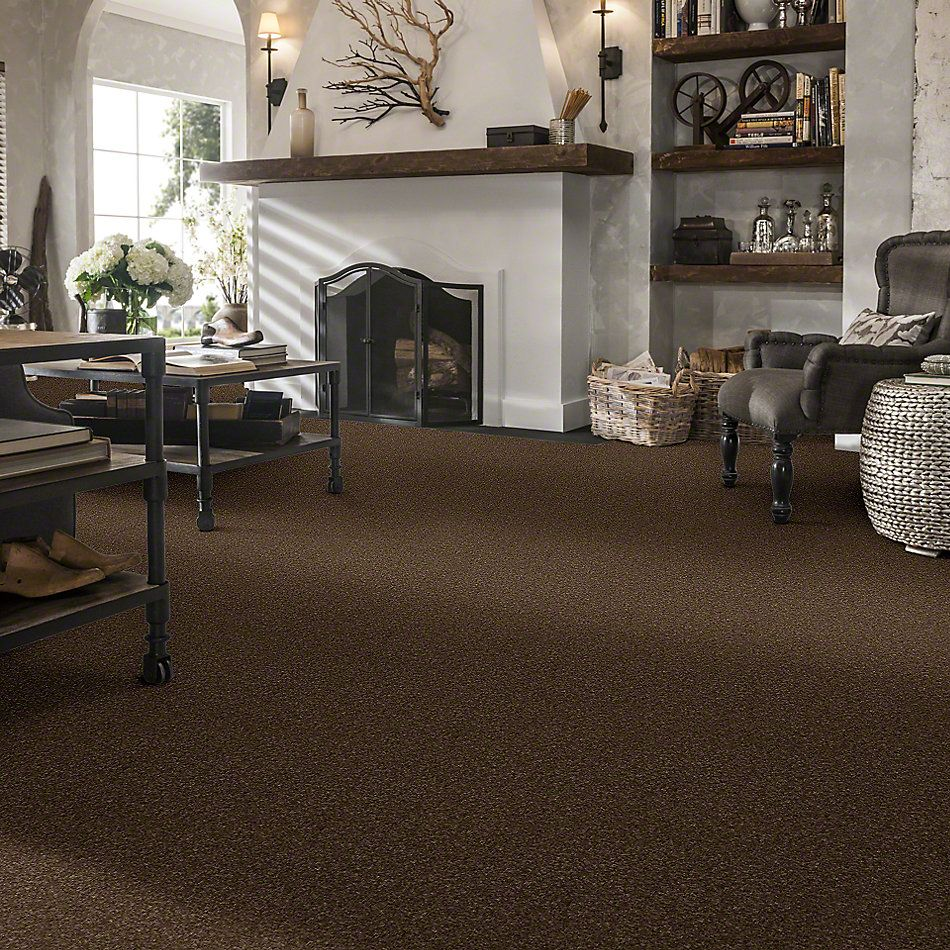 Shaw Floors Caress By Shaw Quiet Comfort Classic Iv Bison 00707_CCB99